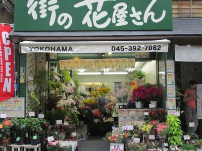 街の花屋さん